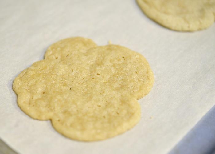 Corn free egg free gluten free dairy free sugar cookies