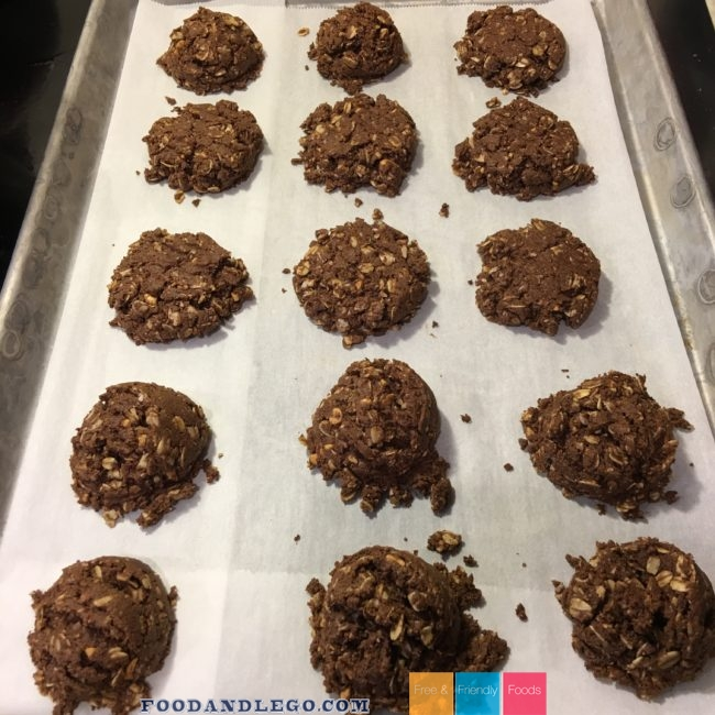 Free and Friendly Foods Chocolate Peanut Butter Oat Cookies