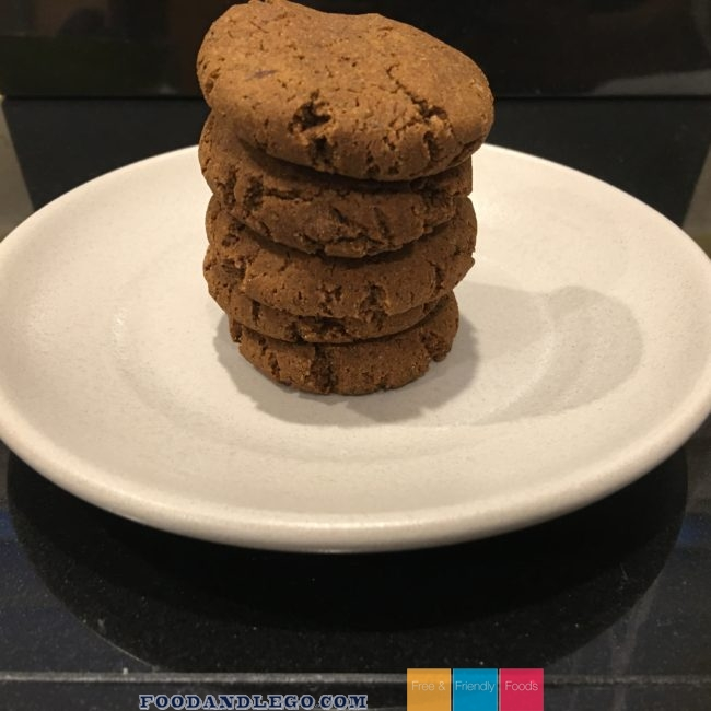 Free and Friendly Foods Paleo Ginger Cookie