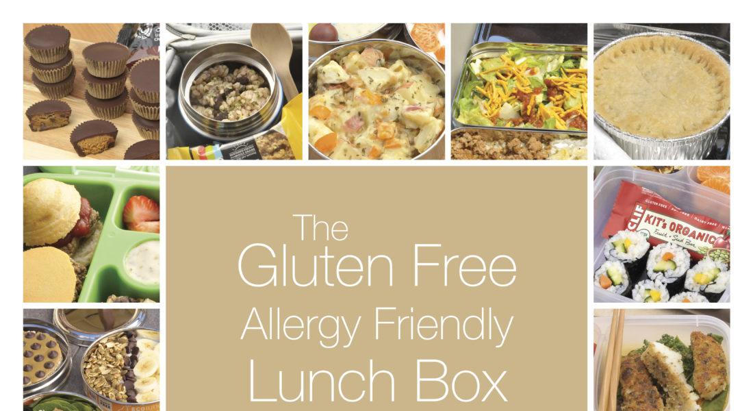 Gluten Free Allergy Friendly Cookbook