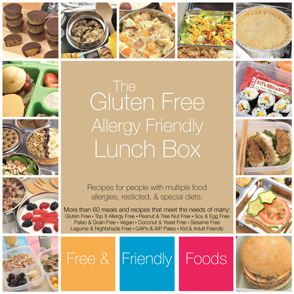 The Gluten Free Allergy Friendly Lunch Box by Free & Friendly Foods