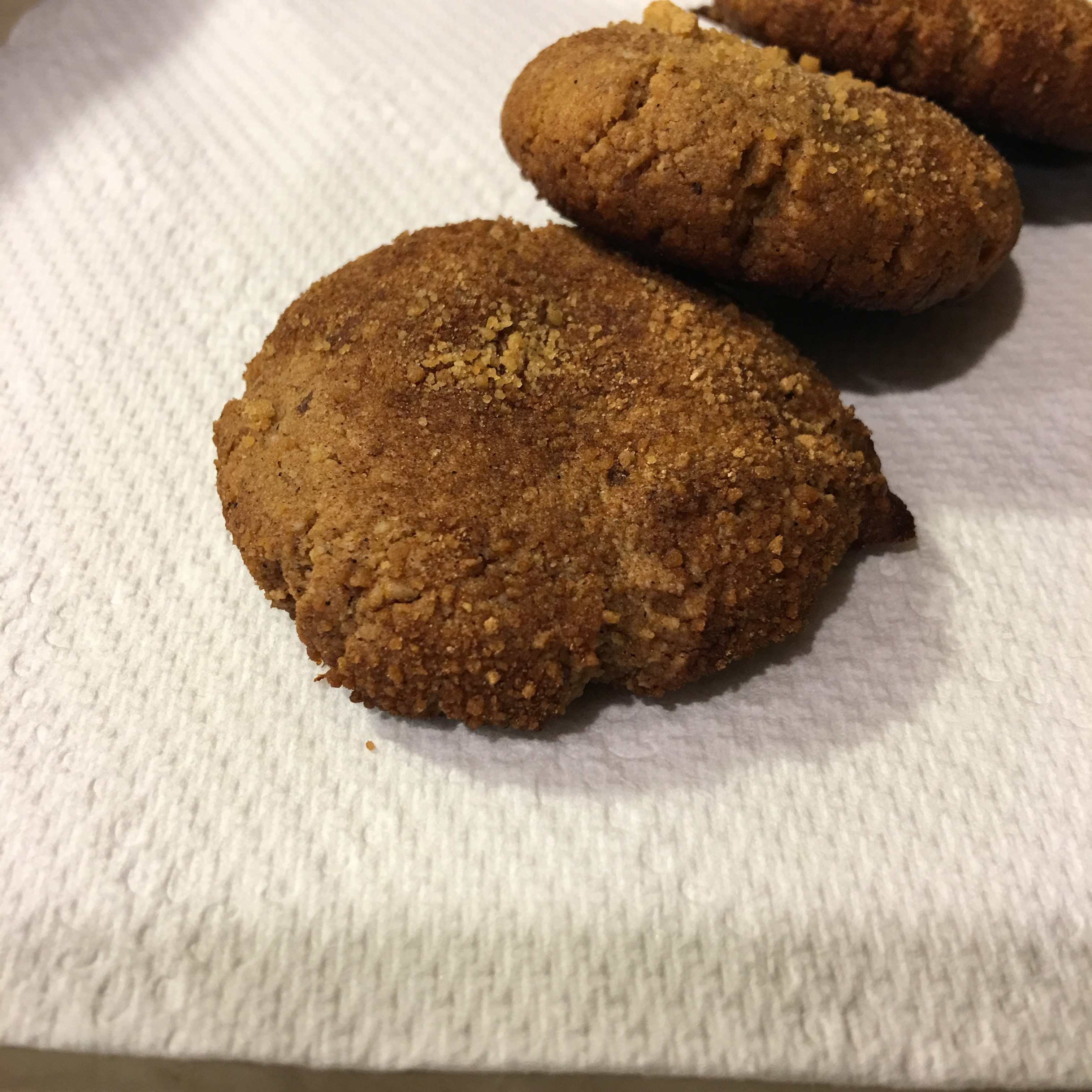 Free and Friendly Foods Snickerdoodle Attempt One