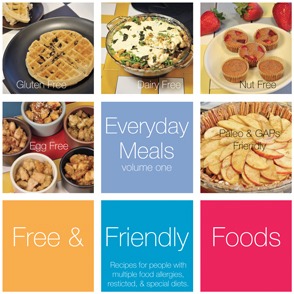 Everyday Meals Volume 1 by Free & Friendly Foods